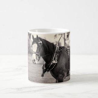 Cerca - caballo ido días de Clydesdale Tazas De Café