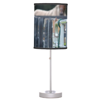 cerca con el caballo descolorado detrás lámpara de escritorio