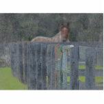 cerca con el caballo detrás de resumido grunged esculturas fotograficas
