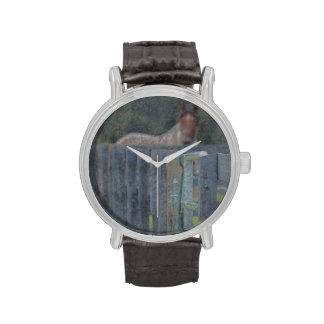 cerca con el caballo detrás de resumido grunged reloj de mano