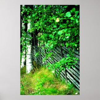 Cerca con el musgo, Sunne, Suecia Impresiones