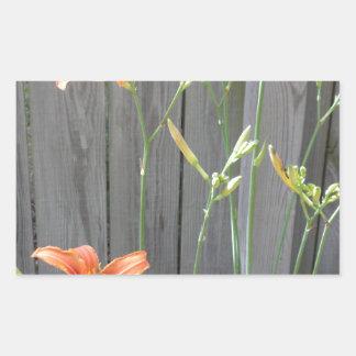 Cerca con Lillies Pegatina Rectangular