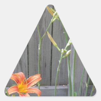 Cerca con Lillies Pegatina Triangular
