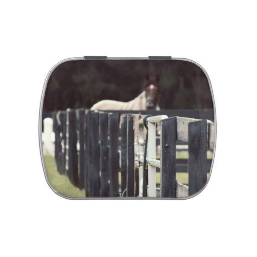 cerca de la granja con el caballo detrás de la sep frascos de caramelos
