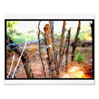 Cerca del alambre de púas fotografías