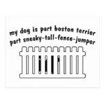 Cerca-Puente de la pieza de Boston Terrier de la p Postales