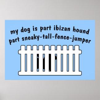 Cerca-Puente de la pieza del perro de Ibizan de la Poster