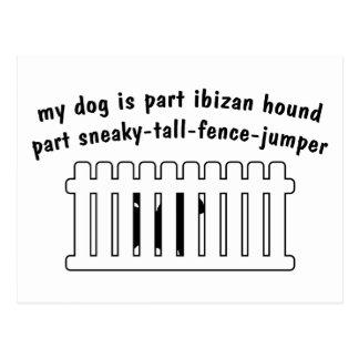 Cerca-Puente de la pieza del perro de Ibizan de la Tarjeta Postal