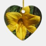 Cerca resistida amarillo del lirio adorno para reyes