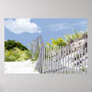 Cerca y duna de la playa poster