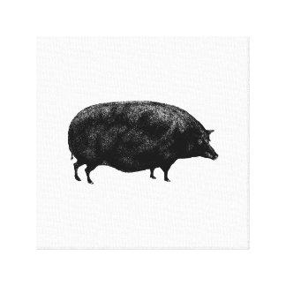Cerdo antiguo del vintage lona estirada galerías