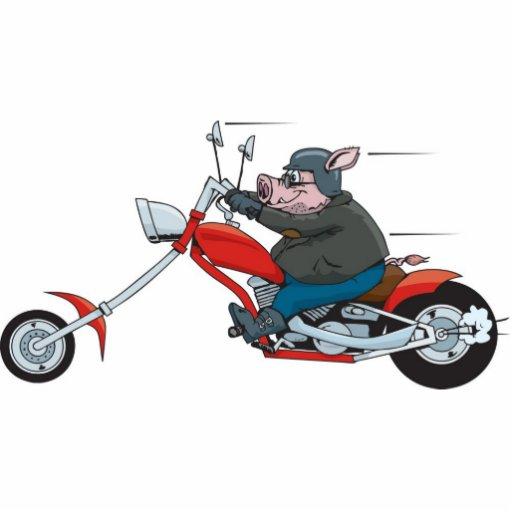 cerdo-bici fotoescultura vertical