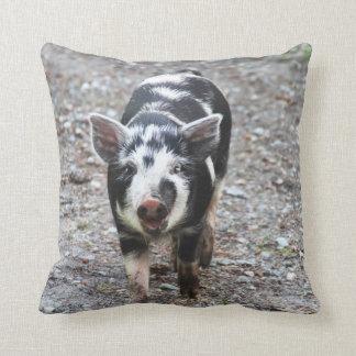 Cerdo blanco y negro del bebé cojin