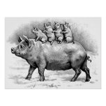 Cerdo con los cochinillos impresiones