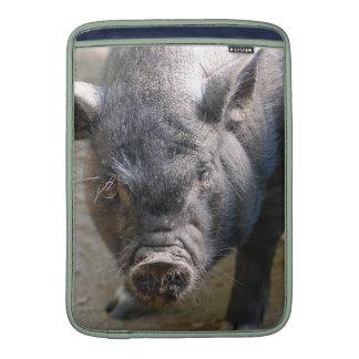 Cerdo de Borneo Fundas Para Macbook Air