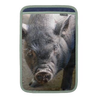Cerdo de Borneo Funda Para Macbook Air