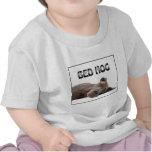 Cerdo de la cama de great dane camisetas