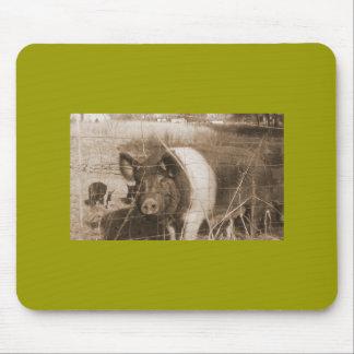 cerdo de los años 60 alfombrillas de ratón