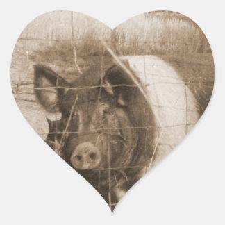 cerdo de los años 60 pegatina en forma de corazón