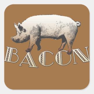 Cerdo del TOCINO del acróbata Pegatina Cuadrada