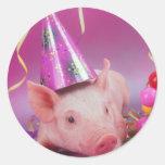 Cerdo divertido del fiesta pegatina redonda