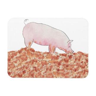Cerdo divertido en imán de la foto del diseño del