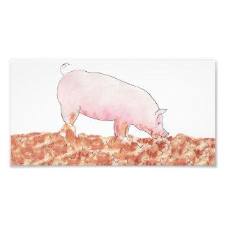 Cerdo divertido en la impresión de la foto del cojinete