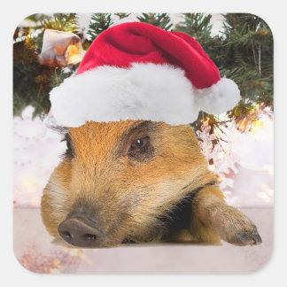 Cerdo dulce en árbol de navidad del gorra de Santa Pegatina Cuadrada