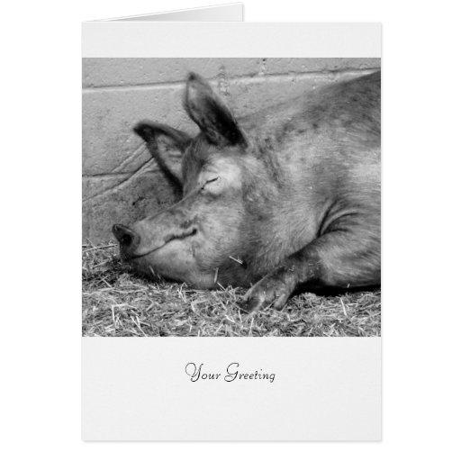 Cerdo el dormir - Personalizable para todas las oc Felicitacion