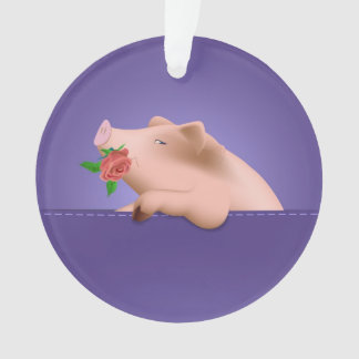 Cerdo en bolsillo