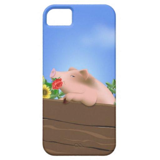 Cerdo en cacerola iPhone 5 protectores