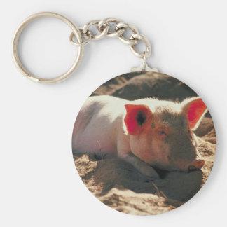 Cerdo en el Sun Llavero Redondo Tipo Pin