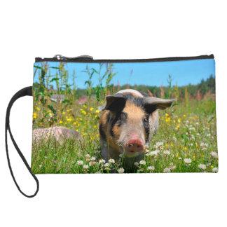 Cerdo en la naturaleza