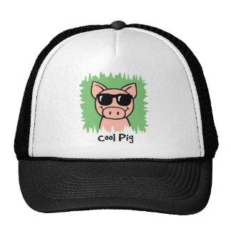 Cerdo fresco del clip art del dibujo animado con gorras de camionero