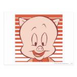 Cerdo gordinflón 23 expresivos expresivos postales