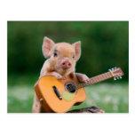 Cerdo lindo divertido que toca la guitarra postales