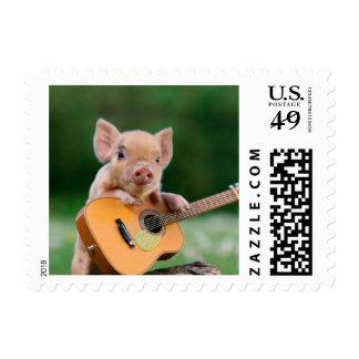 Cerdo lindo divertido que toca la guitarra sello