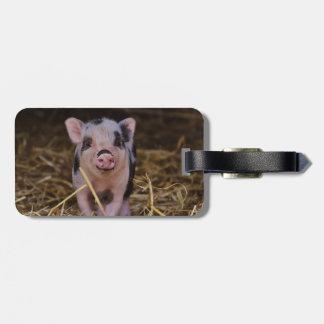 Cerdo lindo dulce etiquetas para maletas