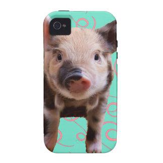 Cerdo lindo - remolinos del azul y del rosa vibe iPhone 4 fundas