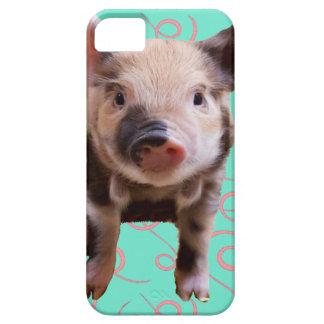Cerdo lindo - remolinos del azul y del rosa iPhone 5 cárcasa