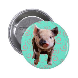 Cerdo lindo - remolinos del azul y del rosa pin redondo de 2 pulgadas