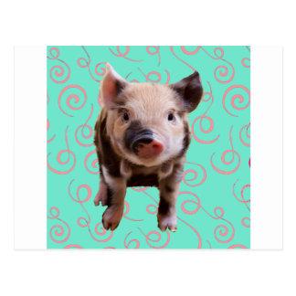 Cerdo lindo - remolinos del azul y del rosa tarjetas postales