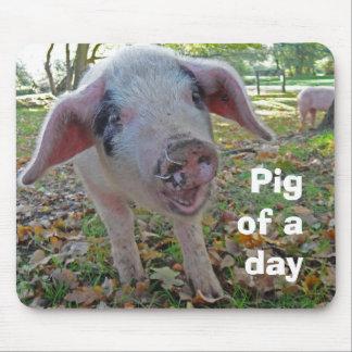 """""""Cerdo mousemat de un día"""" Mouse Pad"""