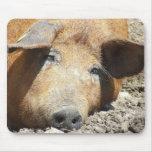 """""""Cerdo"""" Mousepad el dormir Tapetes De Ratón"""