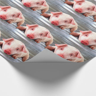 Cerdo Papel De Regalo