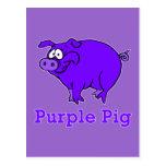 Cerdo púrpura en la ropa, tazas, camisetas del beb tarjetas postales