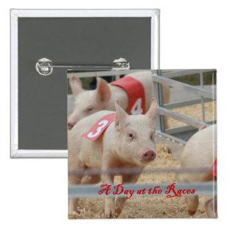 Cerdo que compite con, fotografía de la raza del c pin cuadrado