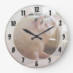 Cerdo que disfruta del Sun Relojes