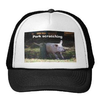 """""""Cerdo que rasguña"""" el gorra del camionero"""