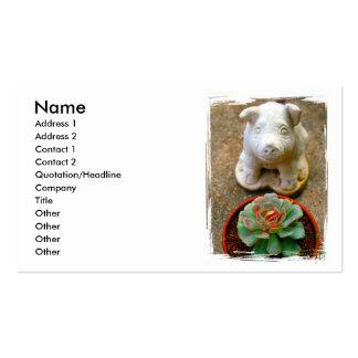 Cerdo que se sienta concreto con la planta suculen tarjetas de visita